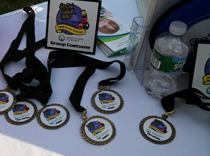 Medals for costumes at epilepsy walk