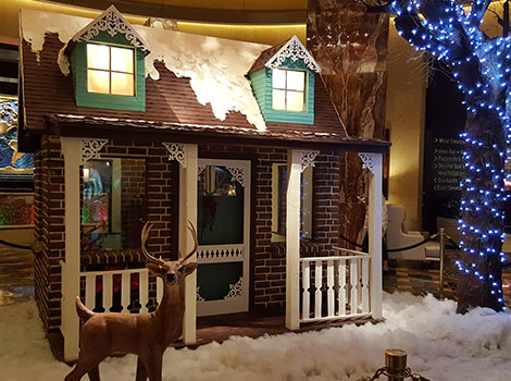Huge gingerbread house at AES conference